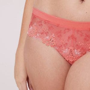Shorty - Corail